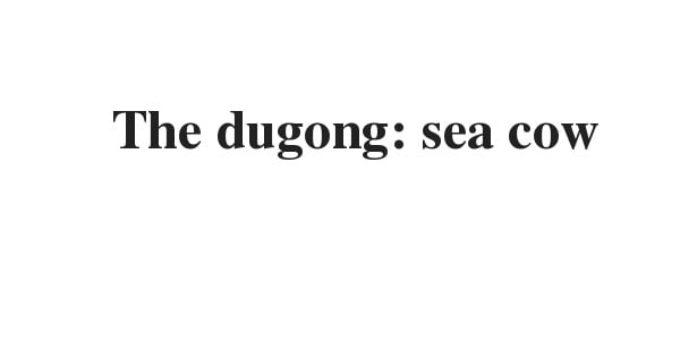 The dugong: sea cow