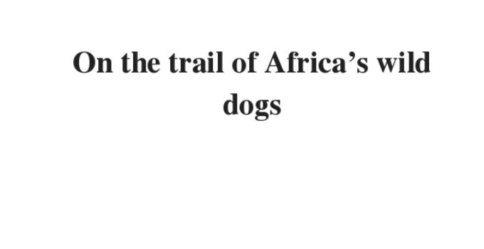 On the trail of Africa's wild dogs